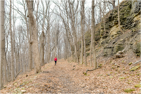 Bruce Trail through Hamilton's Escarpment