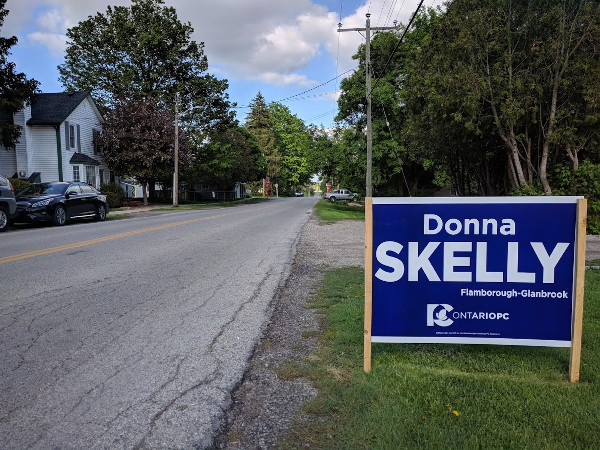 Donna Skelly lawn sign in Jerseyville (RTH file photo)