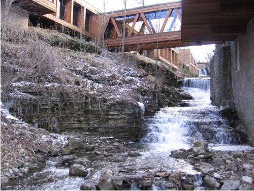 Figure 5. Eramosa exposed in the bed of Ancaster Creek: the Eramosa escarpment produces the small waterfall seen just upstream of the Old Mill Restaurant.