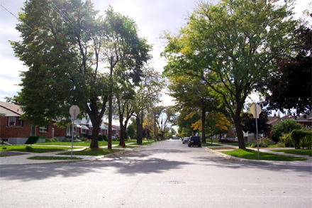 East 43rd Street in
