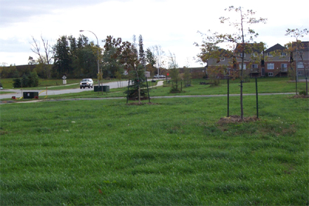 Open space in The