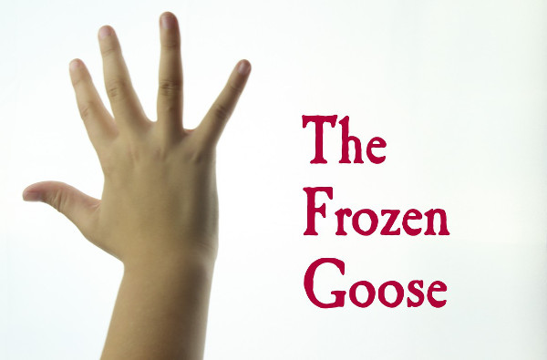 The Frozen Goose film project campaign