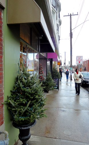 Christmas trees line the sidewalks