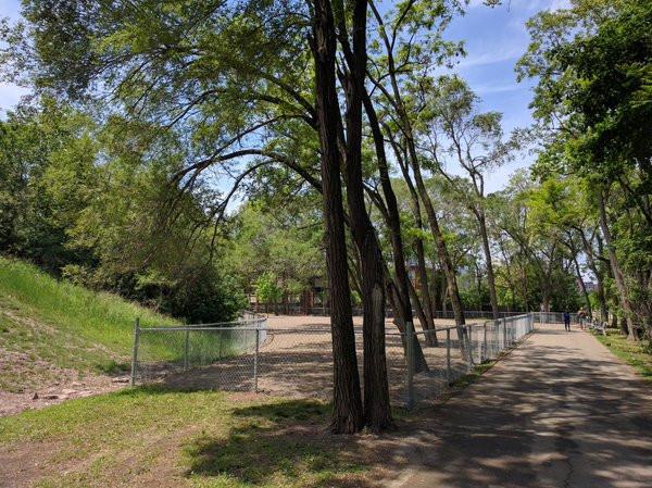Claremont Dog Park Hamilton