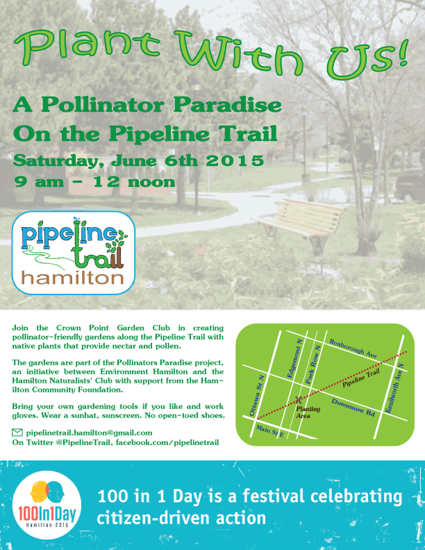 Poster: Pollinator Paradise on the Pipeline Trail (Image Credit: Crown Point Community)