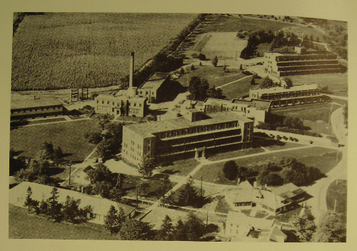 Hamilton Mountain San. From left to right the terraced buildings are the Wilcox (Hutton and Souter, 1938); the Southam, (Witton,1928); and the Evel (Hutton and Souter, 1932). (Source: Archives of Hamilton Health Sciences and the Faculty of Health Sciences, McMaster University)