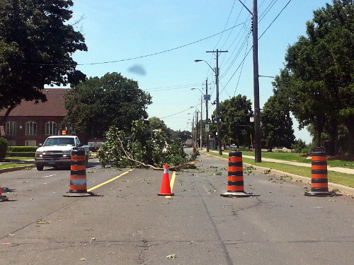 Tree down on Concession after summer 2013 storm (RTH file photo)