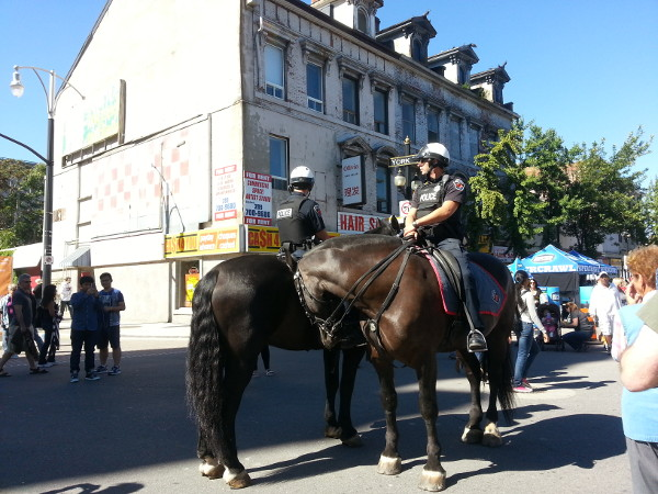 Easiest pay duty ever: Hamilton mounted police maintaining order