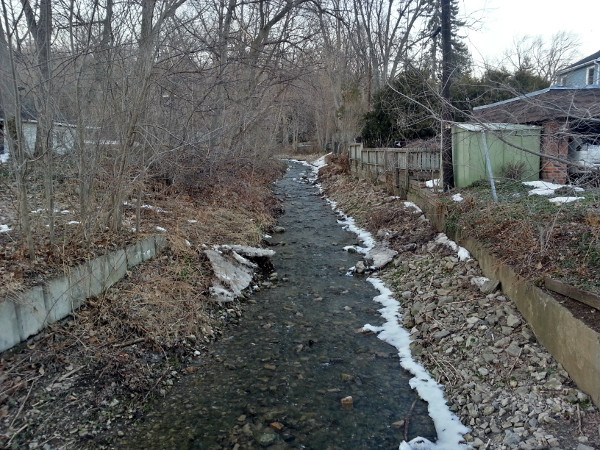 Sydenham Creek looking upstream from the north side of Alma Street