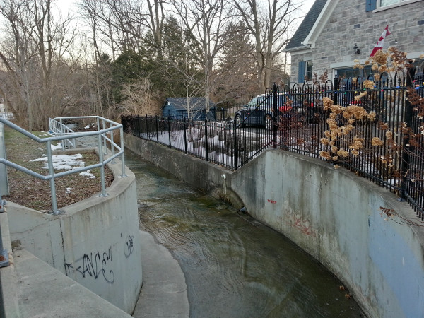 Sydenham Creek looking downstream from the culvert crossing Alma Street