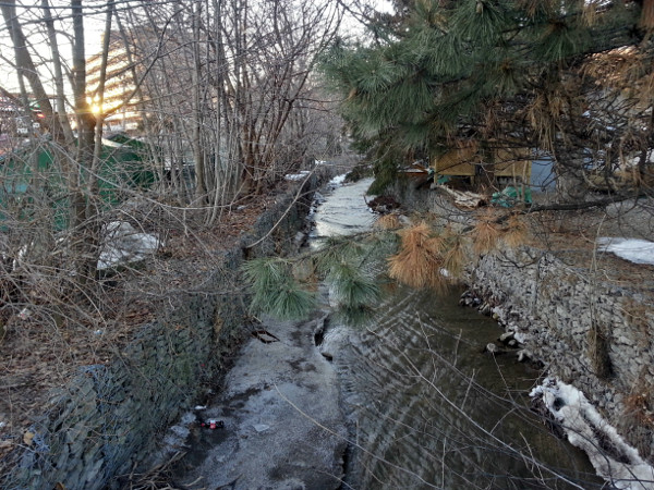 Sydenham Creek looking upstream from York Road