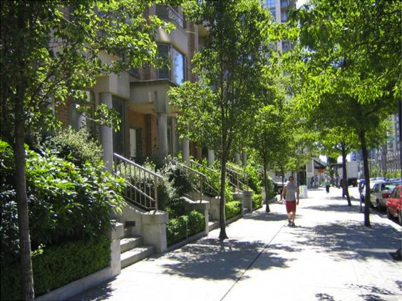 Tree-lined street with rowhouses (Image Credit: Price Tags)